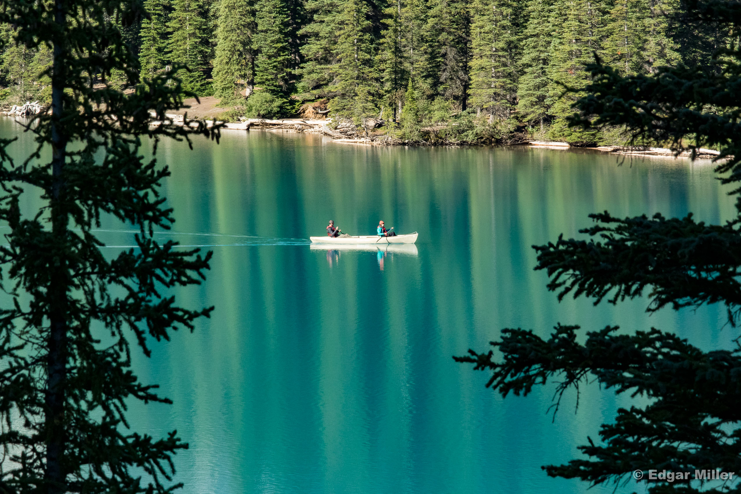 Conifers and Canoe, Lake Moraine, Canada
