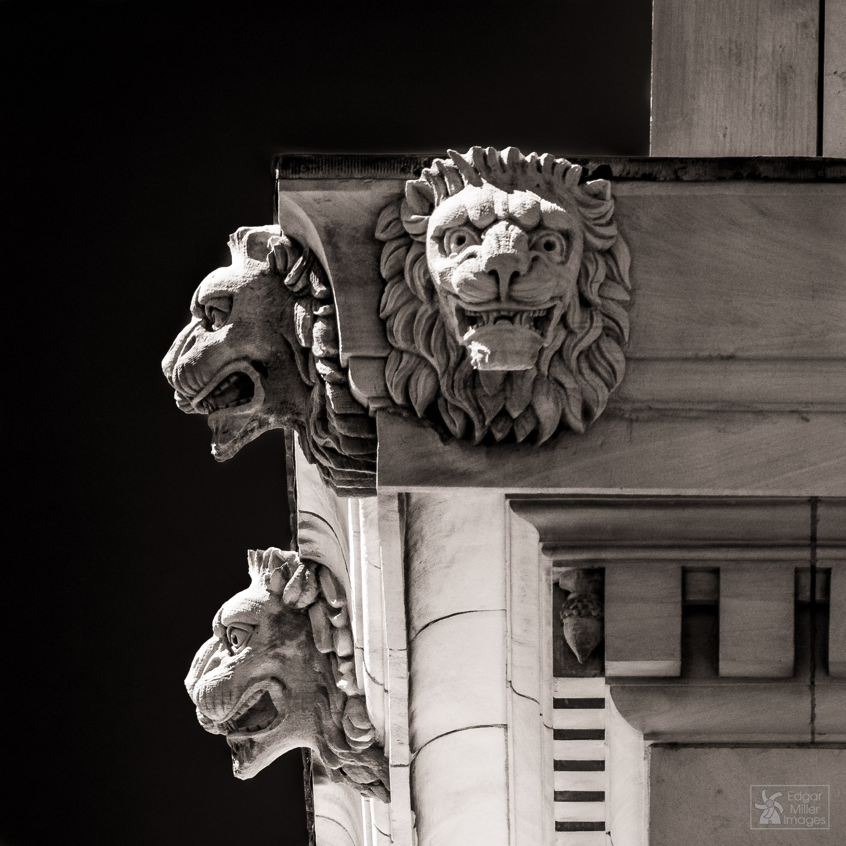Lions at the U.S. Post Office