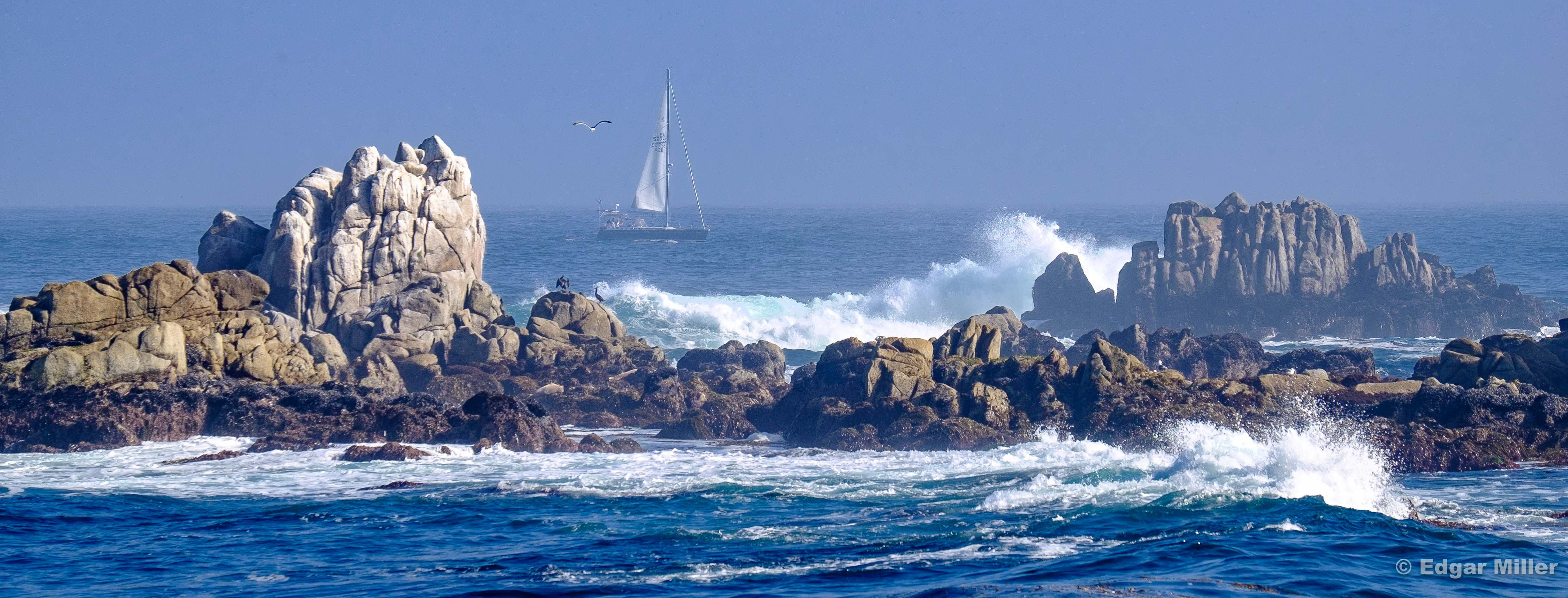 Passing Sailboat, Pacific Grove, California