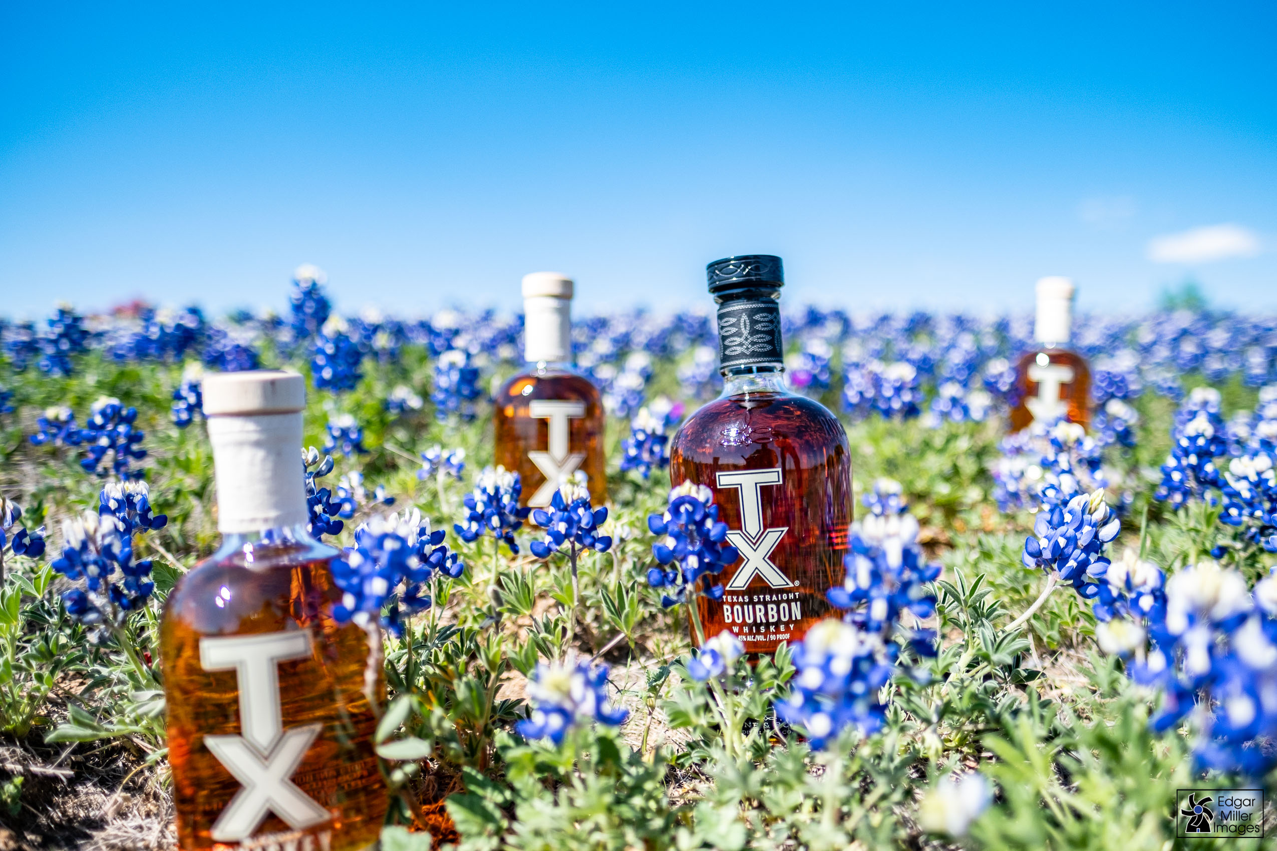 TX Whiskey and Bluebonnets